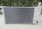 se-vende-radiador-aluminio-saxo-106-gra.jpg