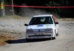 106-rallye-grn.jpg