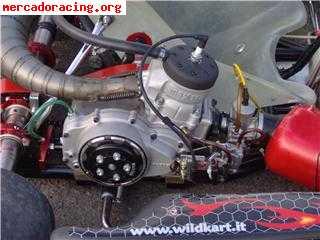 kart 125 6 velocidades