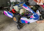 se-vende-kart-kosmic-kf-con-motor-125cc-automatico-35hp.jpg