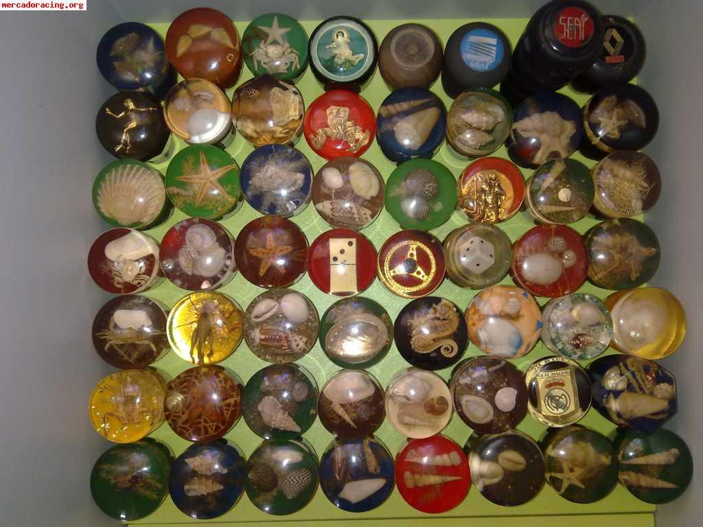 Compro pomos clasicos conchas caracolas estrellas - Pomos para puertas de cocina ...