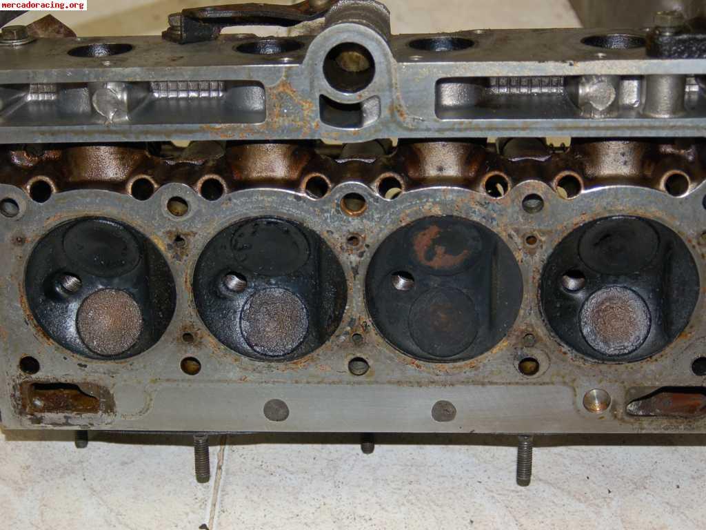 Alpine motor for Alpine motors of raleigh