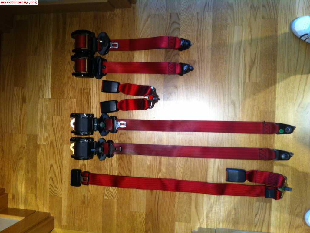 Cinturones Rojos Originales y Homologados de Ford 677db24ebdf8
