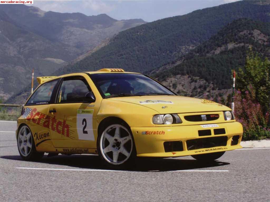 Seat Ibiza Cupra - R project