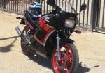 rd-350-1wt-japonesa-apodada-matapijos-o-viuda-negra.jpg