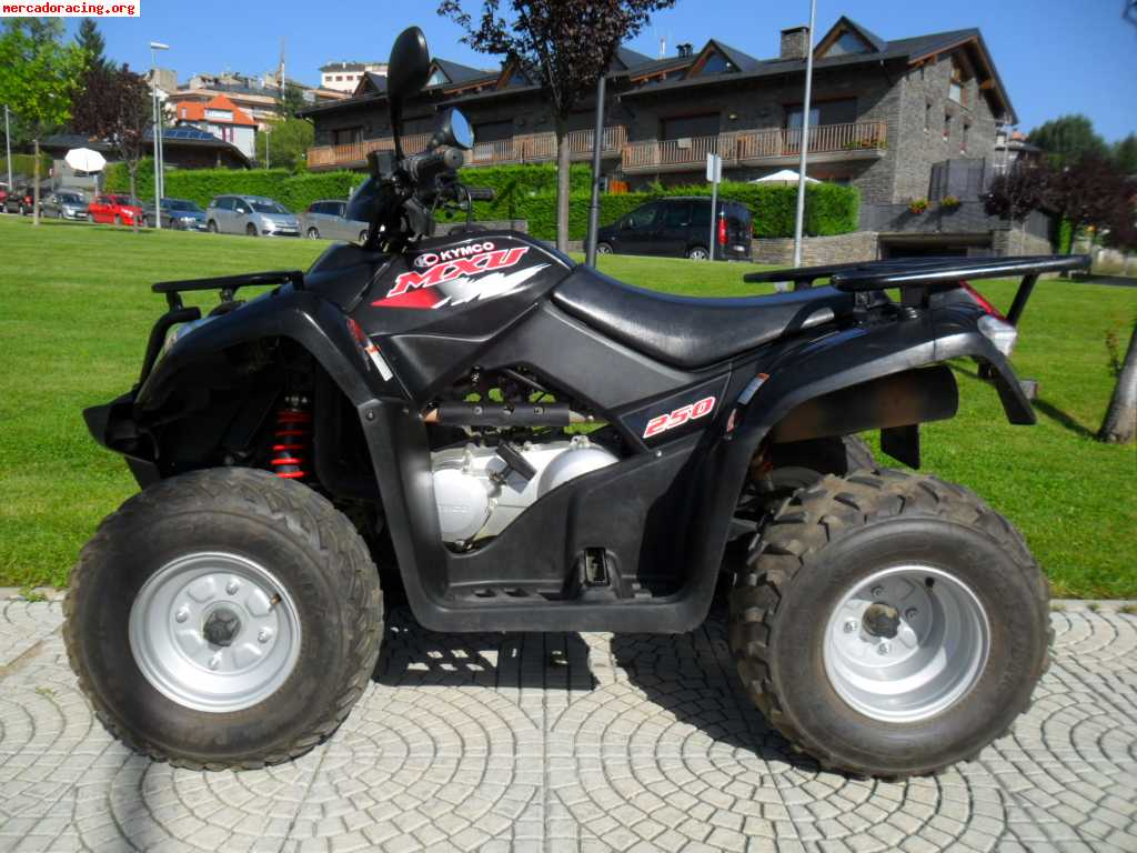 quad kymco mxu 250 venta de quads y buggys. Black Bedroom Furniture Sets. Home Design Ideas